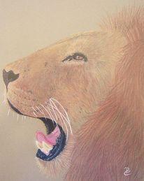 Afrika, Wildnis, Pastellmalerei, Löwe
