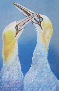 Pastellmalerei, Tölpel, Blau, Vogel