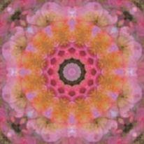 Mandala, Digitale kunst