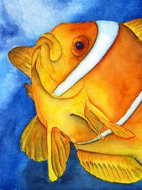 Martim, Bunt, Meer, Fisch