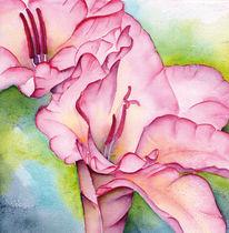 Frühling, Gladiolen, Rosa, Bunt