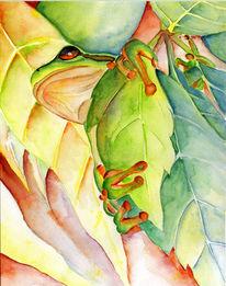 Laubfrosch, Tiere, Aquarellmalerei, Frosch