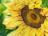 Herbst, Blumen, Gelb, Aquarellmalerei