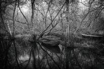 Schwarz, Wasser, Weiß, Landschaft
