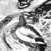 Ente, Zeichnung, Wasser, Teich
