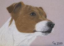 Pastellmalerei, Hundeportrait, Tierportrait, Tierzeichnung