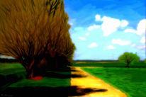 Himmel, Landschaft, Weg, Wiese