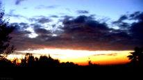 Baum, Blau, Himmel, Abendrot