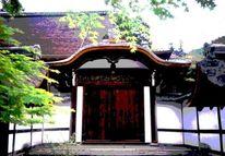 Garten, Japanisch, Architektur, Fotografie