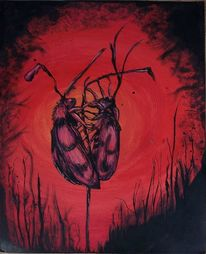 Feuer, Wärme, Insekten, Liebe