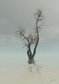 Wasser, Fantasie, Baum, Traum
