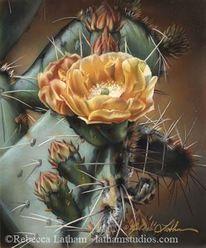 Gemälde, Malerei, Kaktusblüte, Kaktus