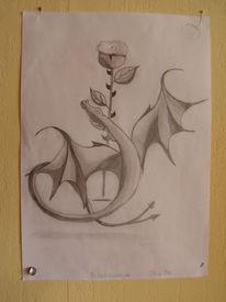 Zeichnung, Drache, Rose, Fantasie