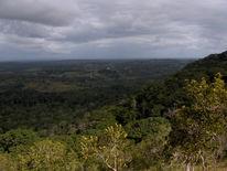 Grün, Kenia, Ausblick, Fotografie