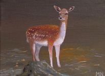 Bambi, Tiere, Rotwild, Gehege