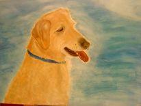 Ölmalerei, Malerei, Labrador