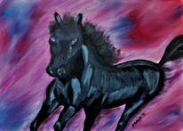 Schwarz, Pferde, Lila, Tiere