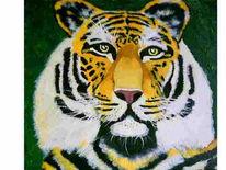 Tiere, Tiger, Katze, Malerei