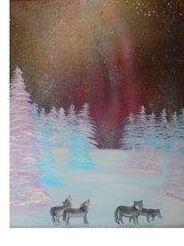 Nacht, Wald, Nordlichter, Baum