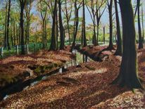 Bach, Schatten, Herbstwald, Wald