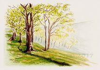 Tusche, Grün, Naturmalerei, Skizze