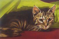 Katzenportrait, Decke, Liegen, Tiermalerei