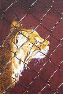 Freiheit, Ölmalerei, Tiermalerei, Tierportrait