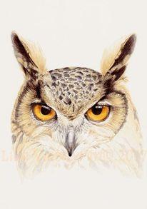 Uhu, Zeichnen, Augen, Tiere