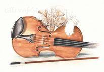 Musik, Geige, Katze, Geigenbogen