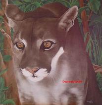 Tiere, Tiermalerei, Tierportrait, Realismus