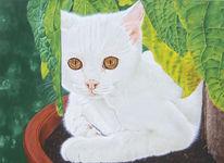 Tierportrait, Realismus, Katzenportrait, Tiermalerei