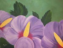 Lila, Grün, Blumen, Eibisch hibiskus