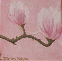 Rosé, Blüte, Blumen, Rosa