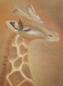 Braun, Pastellmalerei, Giraffe, Tiere