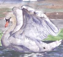 Schwan, Aquarellmalerei, Moor, Moderne kunst