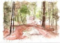 Moor, Feng shui, Herbstwald, Zofingen