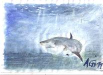 Meer, Aquarellmalerei, Zofingen, Moor