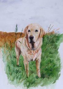 Labrador, Aquarell, Gemälde