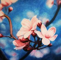 Blüte, Blumen, Kirsche, Malerei