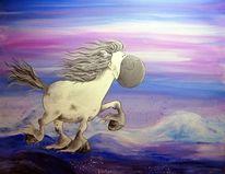 Islandpferd, Pferde, Island, Isländer
