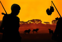 Afrika, Büffel, Landschaft, Gelb