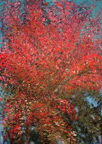Blutbuche, Herbst, Baum, Herbstblätter