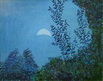 Himmel, Mond, Abendliche, Gartenstimmung