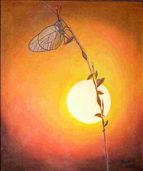 Schmetterling, Sonnenuntergang, Grashalm, Malerei