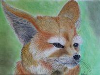 Fuchs, Portrait, Tiere, Hund