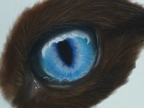 Katzenaugen, Blau, Pastellmalerei, Seele