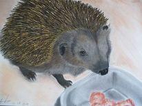 Tiere, Pastellmalerei, Portrait, Natur