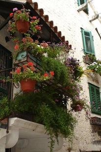 Blumen, Häuser, Balkon, Fotografie