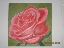 Rot, Blumen, Pinnwand, Rose
