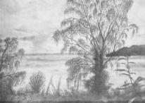 Schatten, Silva, Natur, Bleistiftzeichnung